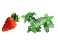 Erdbeer-Menthol 10ml Liquid - V! Liquid